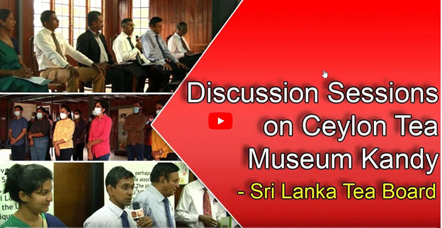 Tea Museum Discussion